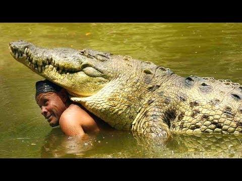 Top 7 Relaciones Más Inusuales Entre Humanos Y Animales