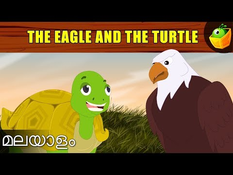The Turtle And The Eagle   Aesop's Fables In Malayalam   Cartoon Story