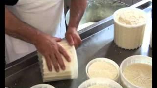 Impariamo a fare il formaggio.wmv