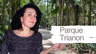 Parque Trianon - Pílulas Paulistanas