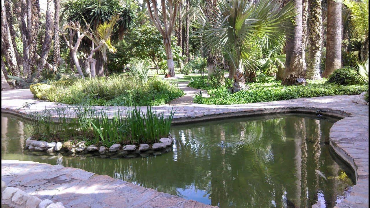 Jardín Huerto Del Cura Visitelche