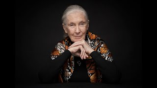 Dr  Jane Goodall — The Legend, The Lessons, The Hope | The Tim Ferriss Show