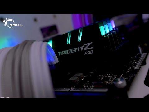 G.Skill Trident Z RGB 64GB DDR4-2933MHz (F4-2933C14Q2-64GTZRX)