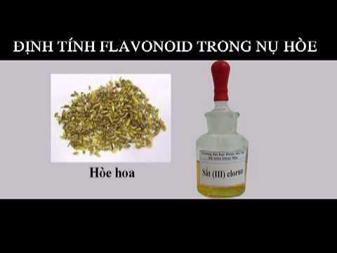 Flavonoid- Phản ứng với dd FeCl3 5% #1