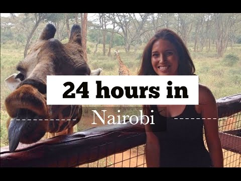 24 hours in Nairobi - Giraffe centre, Elephant orphanage, Mamba village crocodiles