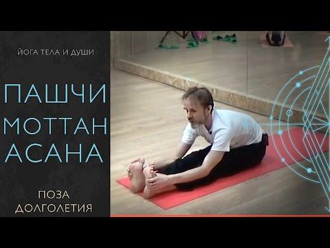 йога для лечения гемороя