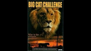 Opening And Closing To Big Cat Challenge 2005 DVD