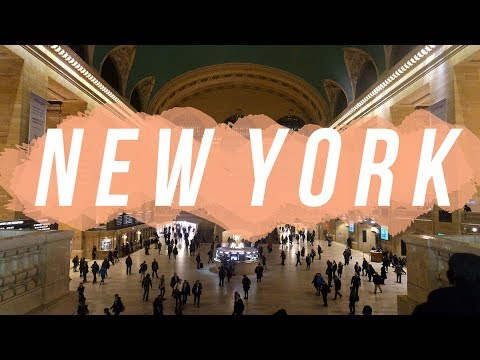Finding Times Square | Travel Vlog