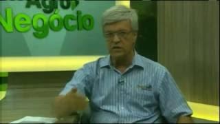 LUIZ ANTONIO MONTEIRO E Os CUSTOS DE ENGORDA ( Garrote )
