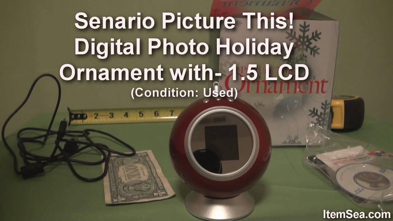 Senario Picture This! Digital Photo Holiday Ornament with ...