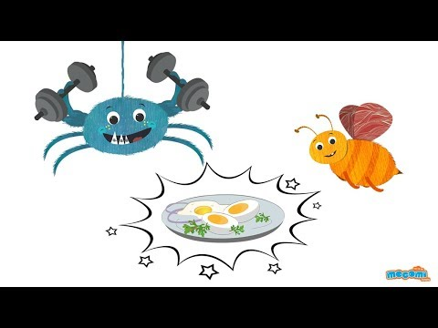 Health benefits of eggs Ask Coley Health Tips for Kids   Educational Videos by Mocomi