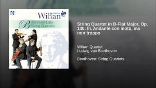 String Quartet in B-Flat Major, Op. 130: III. Andante con moto, ma non troppo