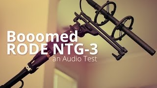 Rode NTG-3 on a Boom Pole