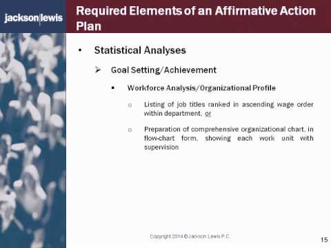 Affirmative Action Plan Compliance The Essentials Of A Successful