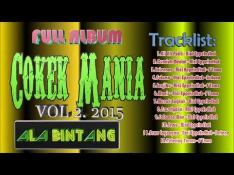 Dangdut Full Album Cokek Mania Vol 2 2015