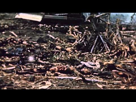 The dead bodies of American and Japanese soldiers at the Red Beach in Iwo Jima, J...HD Stock Footage