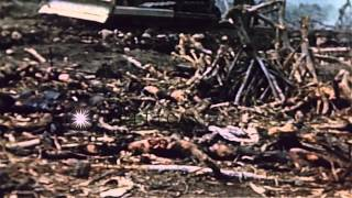 Video The dead bodies of American and Japanese soldiers at the Red Beach in Iwo Jima, J...HD Stock Footage download MP3, 3GP, MP4, WEBM, AVI, FLV November 2018