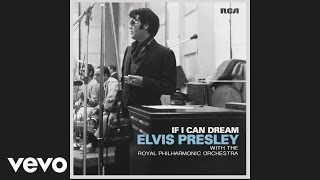 Elvis Presley - And the Grass Won't Pay You No Mind