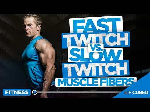 Fast Twitch Vs Slow Twitch Muscle Fibers (Muscle Fibers Explained)