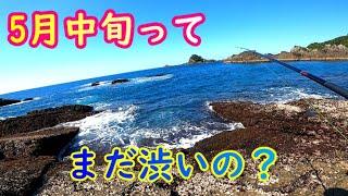 和歌山 すさみ磯 頂いた新しい竿で遠投カゴ釣りしてみた