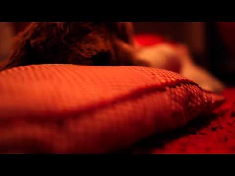 A Slice Of Sleep Test Scene (2011)