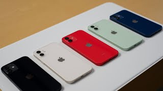 iPhone 12 All Color Comparison Blue, Green, Red, White & Black Plus MagSafe Accessories