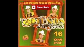 Los Altenos de la Sierra - Tamarindo (En Vivo)