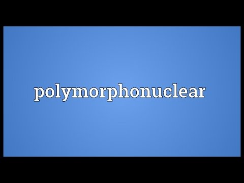 Header of polymorphonuclear