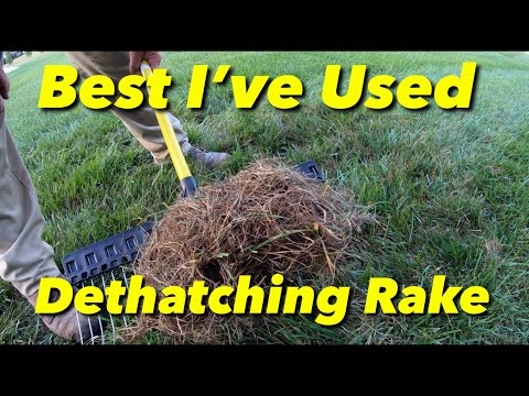 Best Lawn Rake I Have Ever Used