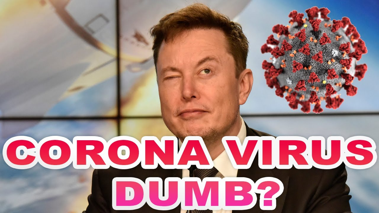 Elon Musk is dumb not COVID-19. Tesla CEO thinks coronavirus panic is 'dumb.' Official Video