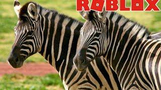 MANADA DE ZEBRAS, FOMOS ATACADOS!! - Roblox | Wild Savannah #2