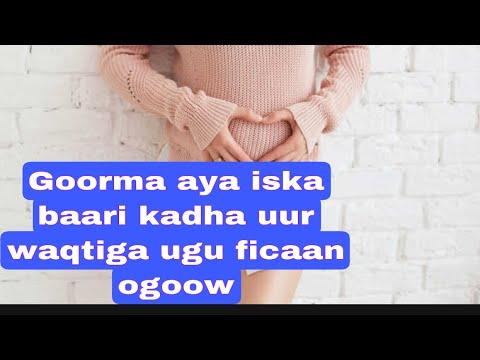 Download waaqtiga ugu horaysa ee uurka cusub la ogaan karo sida sax ah ee uurka lobaro