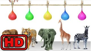 Kid -Kids -Learn Zoo Animals And Colors With Paint Splashing Balloons/Animal Train/Bugs Insects Sha