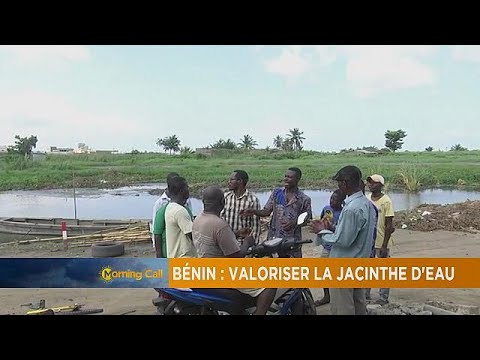 Beninese startup producing 'organic absorbent' for fishermen [The Morning Call]