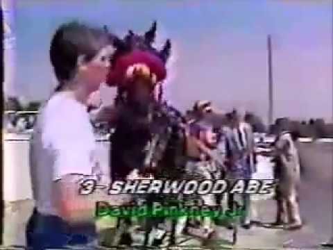 1988 Freehold Raceway SHERWOOD ABE Pfd Inv Track Record Dave Pinkney Jr
