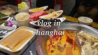 중국 상하이 브이로그 …