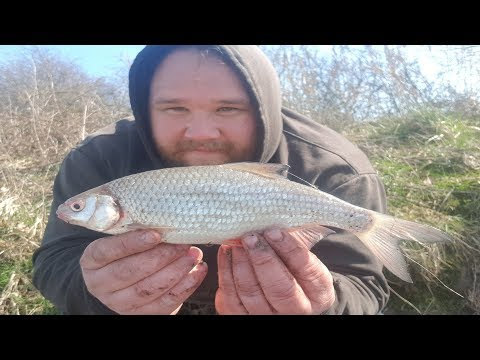 Feeder Fishing For Roach With Groundbait
