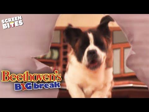 beethoven-movie