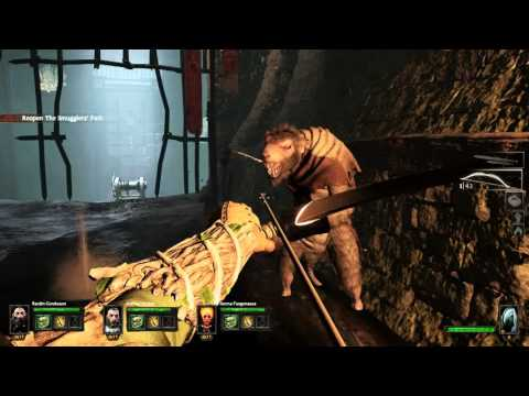 Warhammer: End Times - Vermintide (Smuggler's Run) |