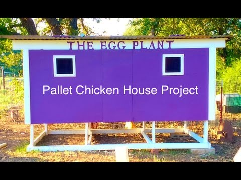 How to make a chicken coop out of wooden pallets