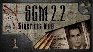 Сталкер Sigerous Mod 2.2 COP SGM 2.2 01 Ворота в Зону.