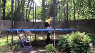 Dachshund Rusty Tying To Get A Ball On The Trampoline.