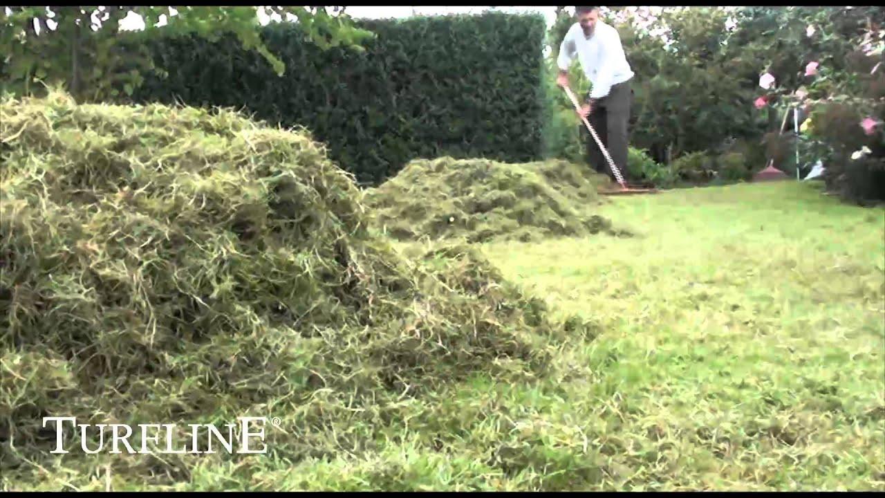 eftersåning af græs
