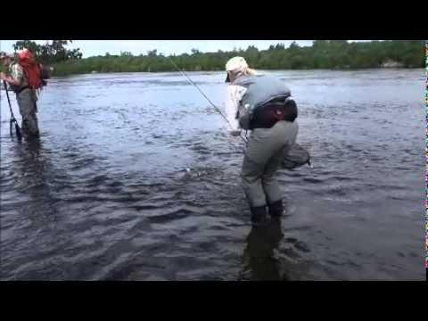 Kamchatka Fly Fishing 2015 Sedanka River