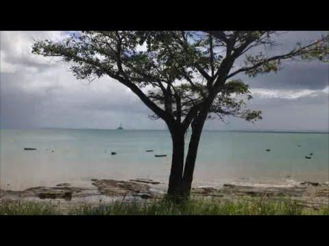 Salvador, Bahia, Brazil - A train trip along the railway coast
