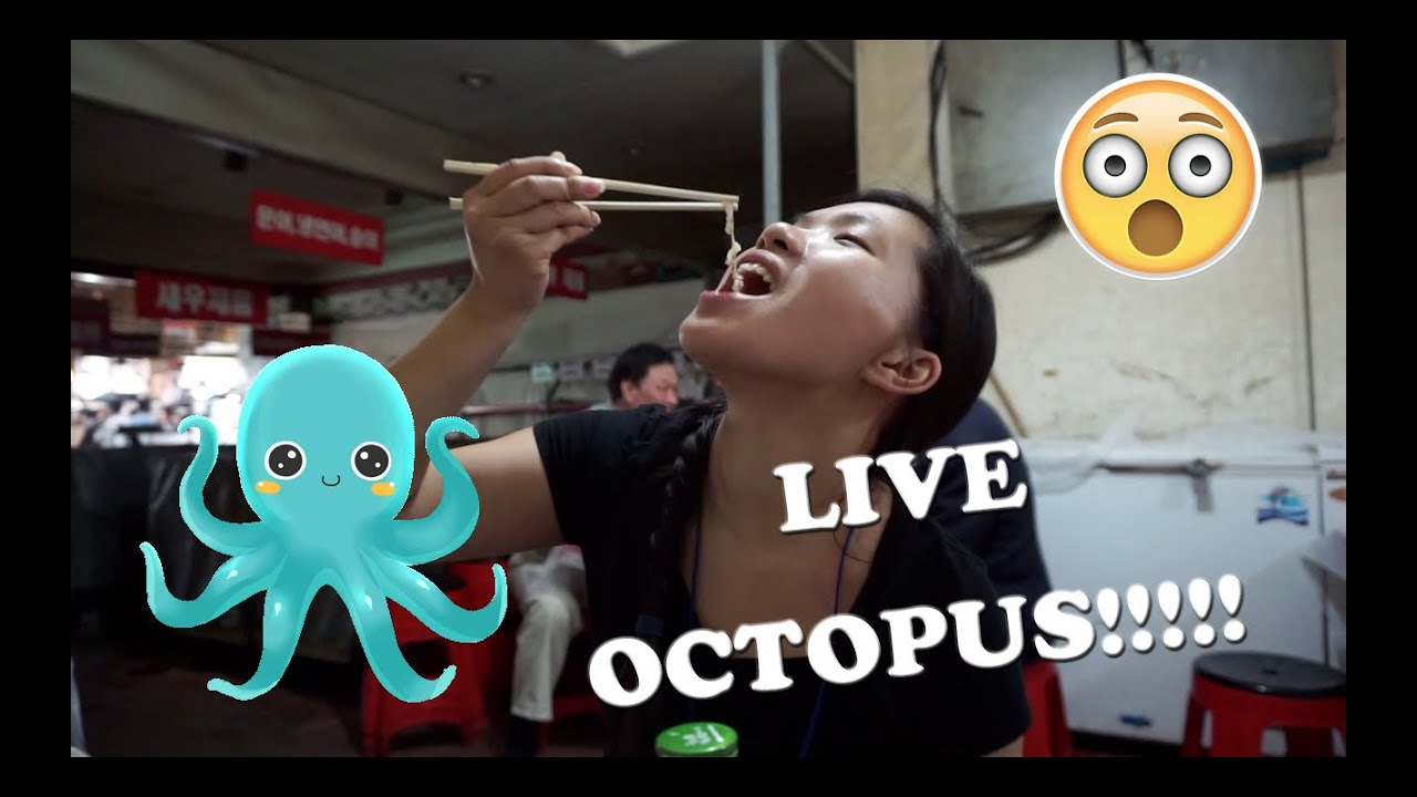 EATING LIVE OCTOPUS 산낙지 at Noryangjin Fish Market 노량진수산물도매시장! | South Korea VLOG May 27, 2016