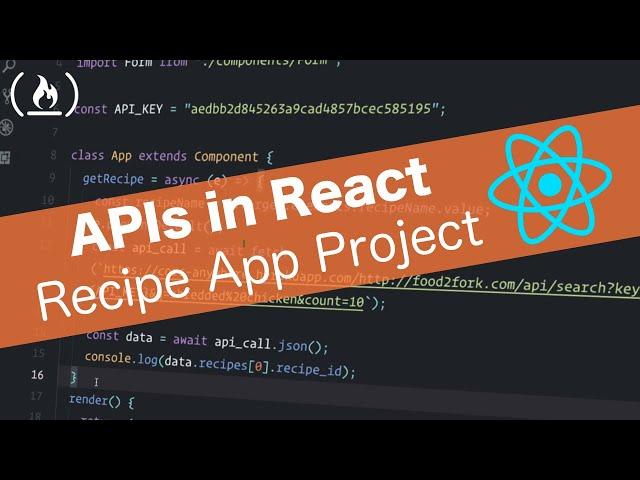 APIs in React Tutorial - Recipe App using React Router