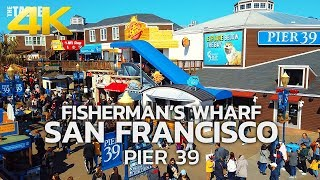 SAN FRANCISCO - Fisherman's Wharf, San Francisco, Pier 39, California, USA, Travel, 4K UHD