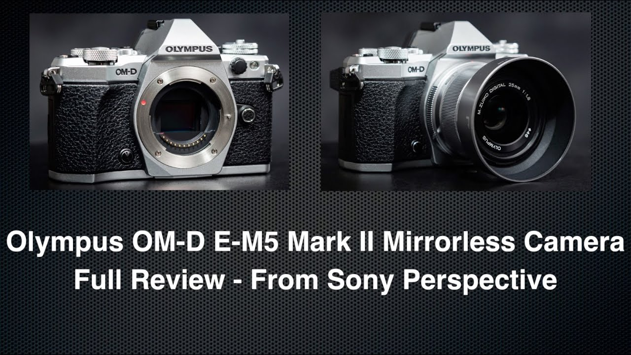 Sony VS  Olympus OM-D E-M5 Mark II Hands On Review