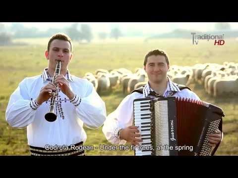 музикэ популарэ молдовеняскэ видео